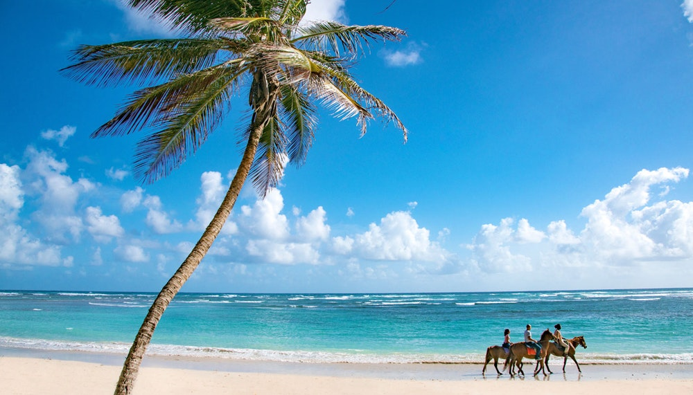 Horse riding Barbados beach