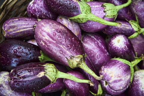 Camden's North Yard food market is opening and it's obsessed with aubergines