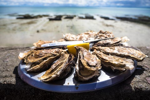 Whitstable Oyster Festival 2021: The ultimate guide