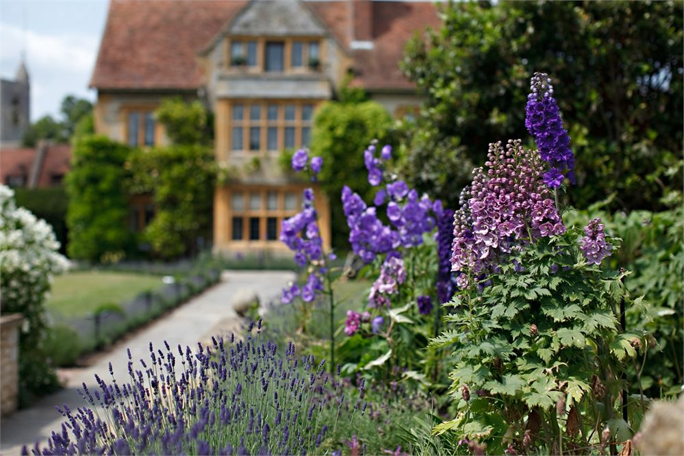 The garden at Le Manoir aux Quat'Saisons