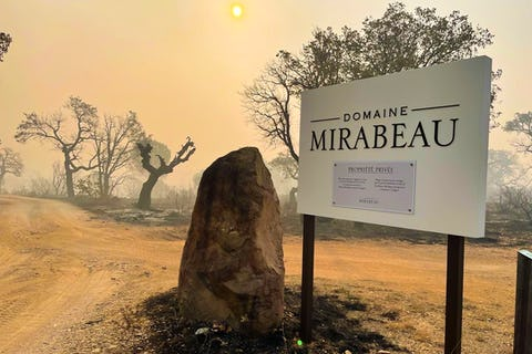 Owners of popular rosé winery Maison Mirabeau speak of 'agony' following deadly wildfires in France