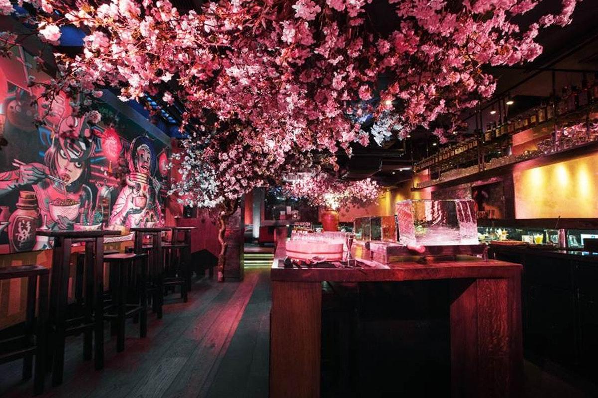 ROKA Charlotte Street hosts cherry blossom pop-up this spring