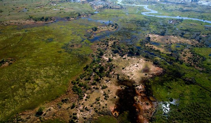 Botswana Africa safari tourism Squaremeal Square Meal travel 2016