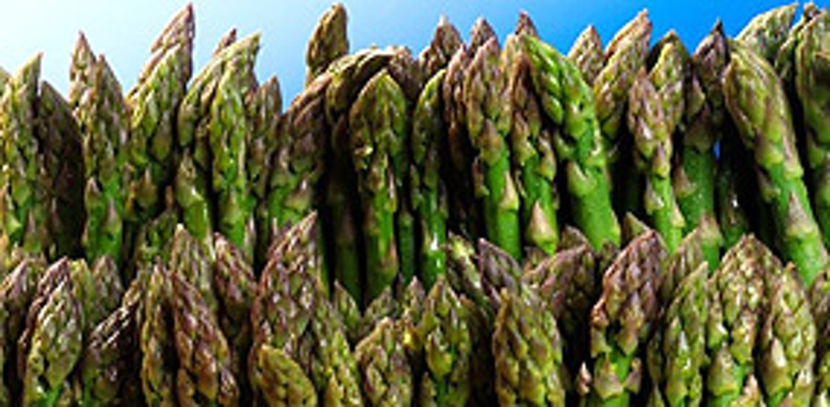 Boundary- Adventures in asparagus- 3 Courses with complementing wines for £75
