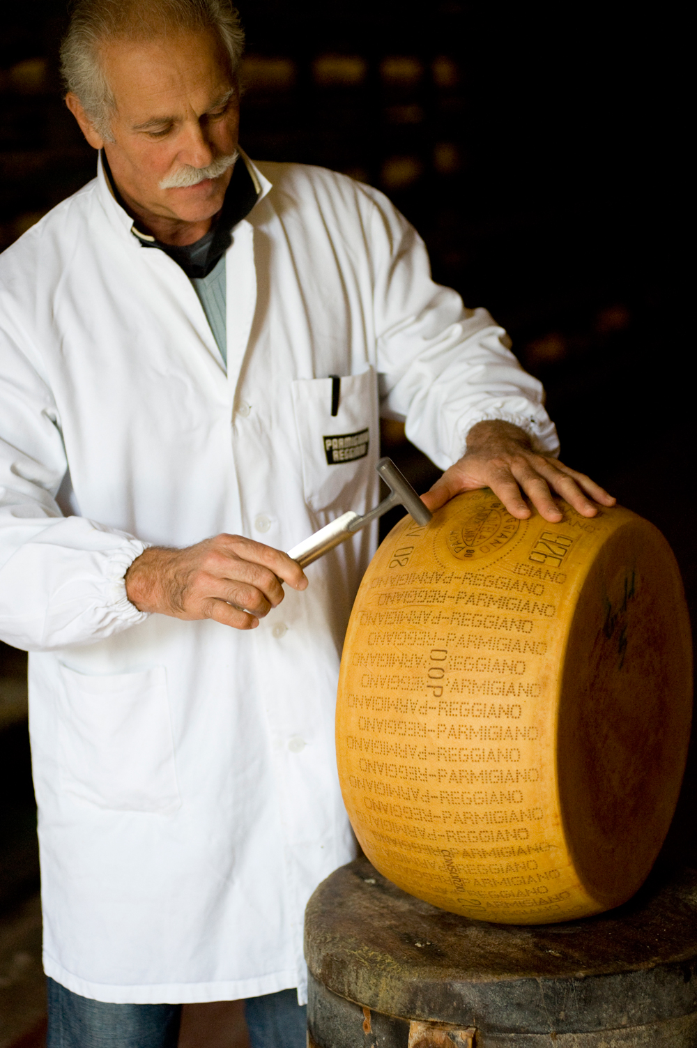 Parmigiano Reggiano cheese maker with cheese