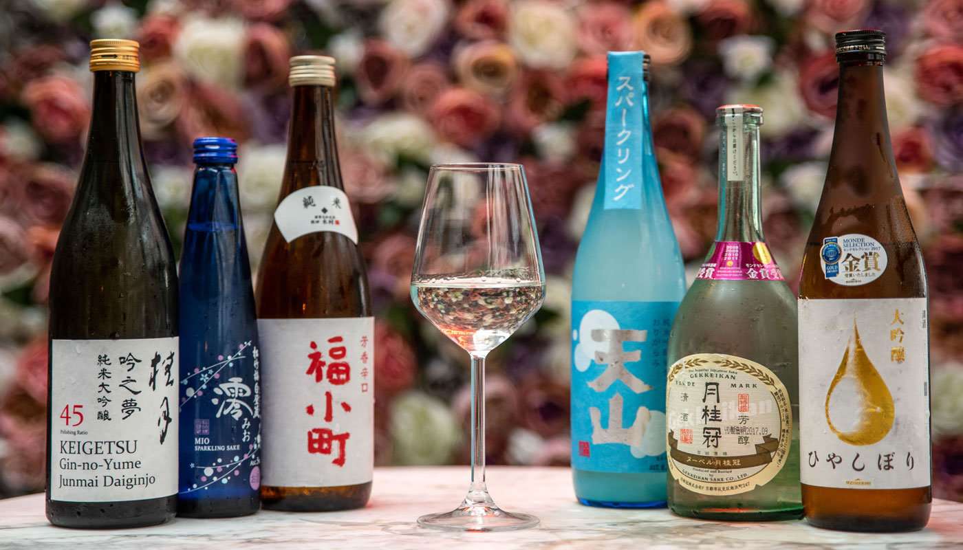Sake choices, sake lineup, lots of sake
