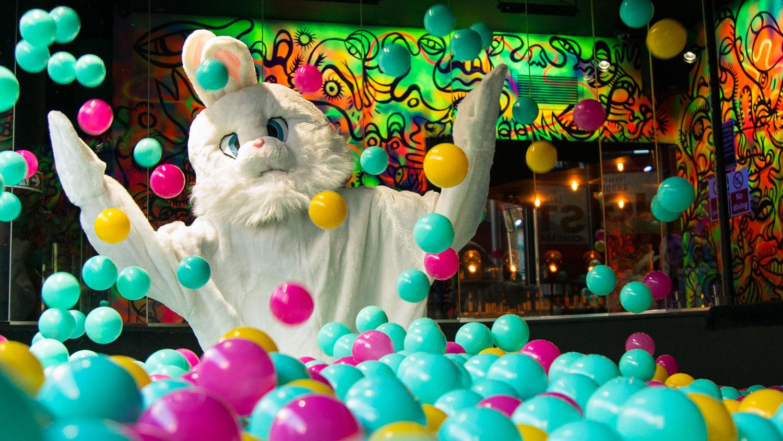 Easter dish  ballie ballerson bunny
