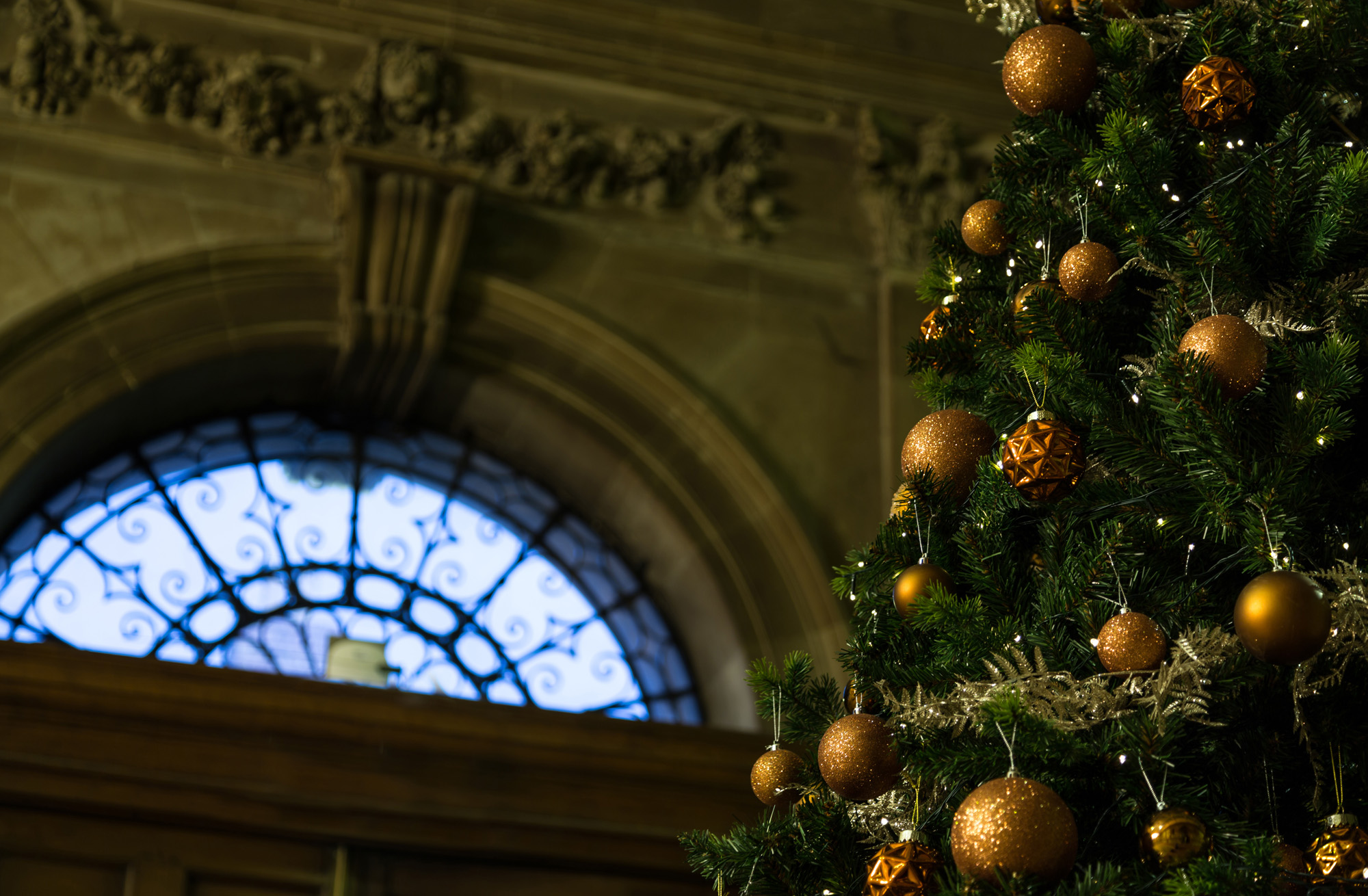 Christmas at Old Shire Hall - venue hire