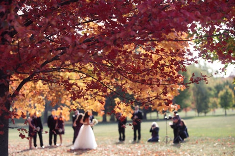 Wedding Venues on a Shoestring