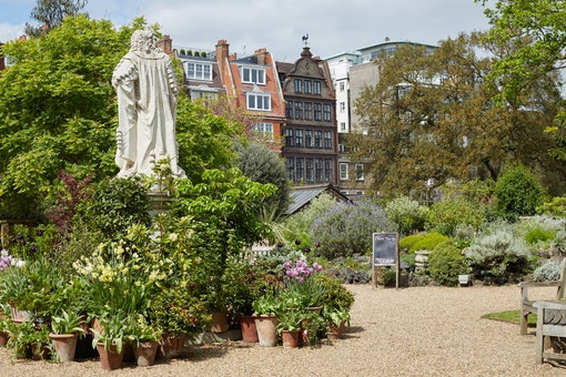 Christmas at Chelsea Physic Garden