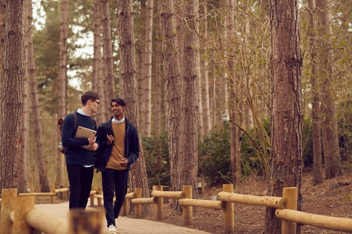 Center Parcs Sherwood Forest