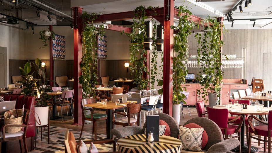 Bluebird Cafe White City