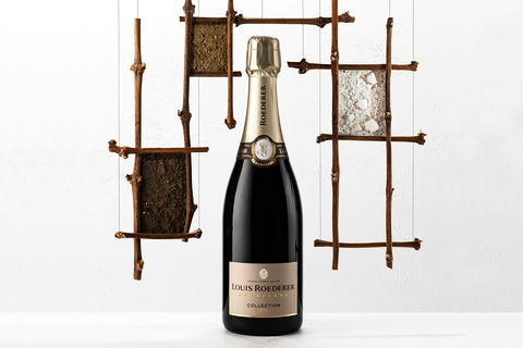 Champagne Louis Roederer's Collection 242 by the glass