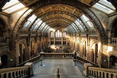 London's best museums for hire