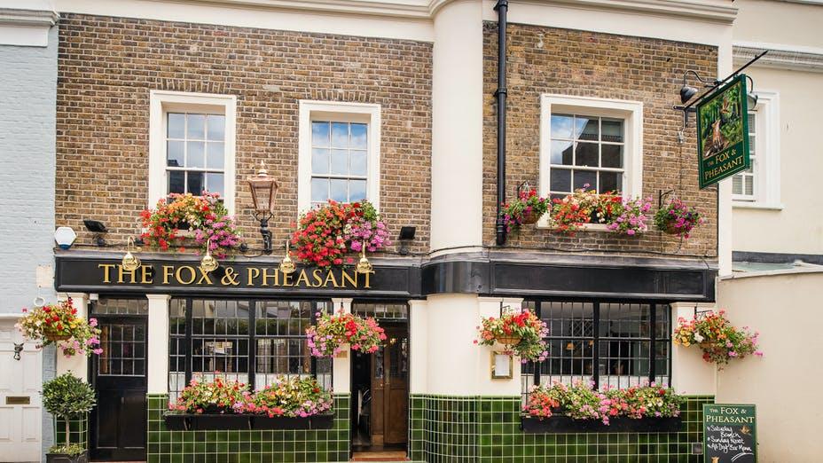 The Fox & Pheasant