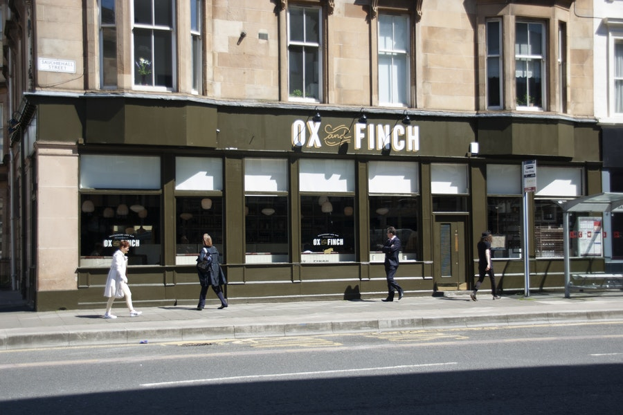 Ox and Finch