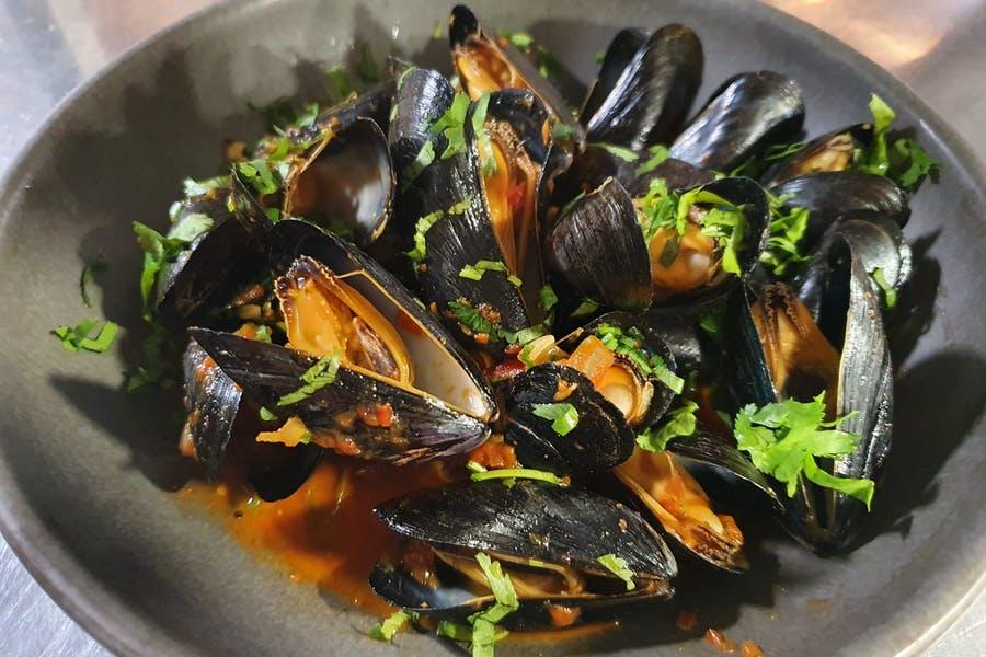 Mussel Box