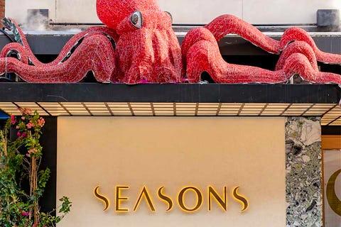 Seasons Mayfair