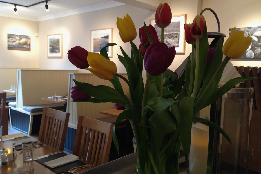 The Olive Tree - Padstow
