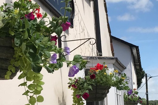 Rose & Crown - Saffron Walden